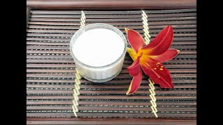Traditional Vietnamese Yogurt