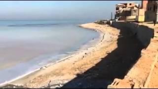 Catastrophe écologique à Bou Ismail