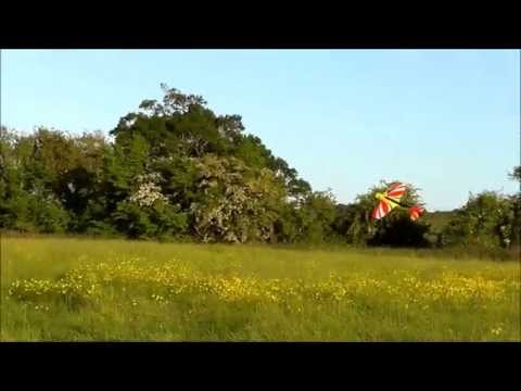 Andy Rigby - ZONE FORMAT 2014 - MKS Servo - Optipower - Sebart Sukhoi
