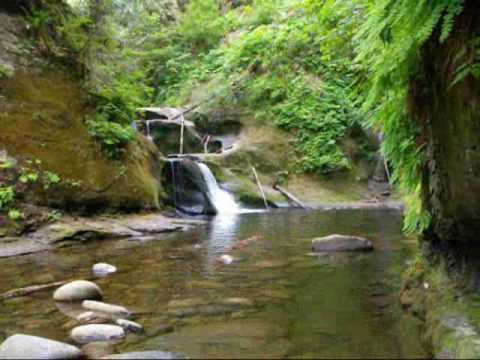 Cliff Park - Kanaka Creek Waterfalls