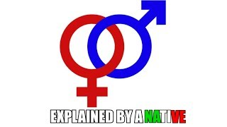 Feminine and Masculine Nouns - The Perspective Of A Native
