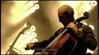 Alain Bashung - Je tuerai la pianiste