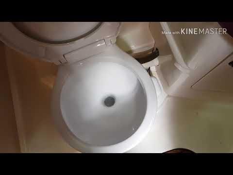 Novi  WC