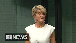 Julie Bishop will retire from politics at upcoming election | ABC News