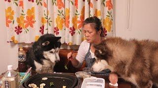 シベリアンハスキー犬 クッキー11歳誕生日をお祝いしました ウィンナー...