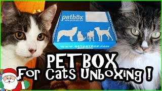 Petbox for Cats Unboxing - Monthly Subscription Box Review thumbnail