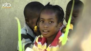 Haïti : un centre pour développer l'agriculture