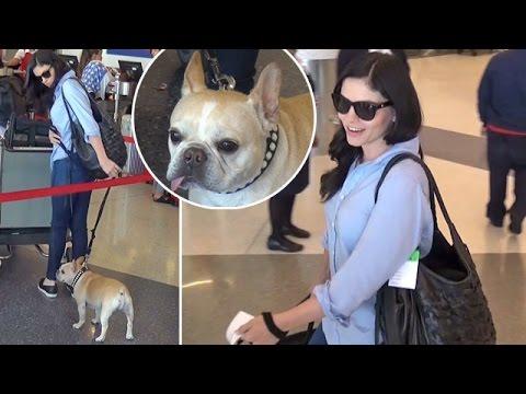 Jodi Lyn O'Keefe Brings French Bulldog On Flight Out Of LAX