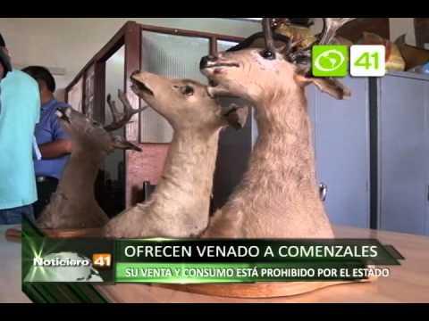 Decomisan carne de venado que era vendida a comensales - Trujillo