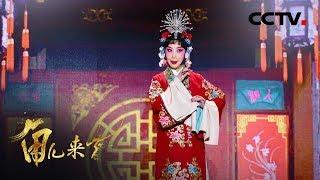 《角儿来了》 20191020 薛亚萍| CCTV戏曲