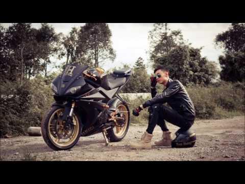 Visitor Phoenix R175 Black And Gold - Lâm Nam Hoàng