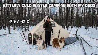 Bitterly Cold Winter Camṗing in a Hot Tent with My Dogs