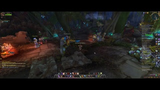 WOW Battle for Azeroth with Friend Swiss