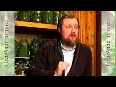 Подорожник, Народная медицина, Лечебные свойства - YouTube