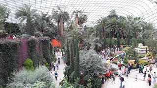 Singapore Walk. Flower Dome. Gardens by the Bay