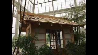 Japanese Tea House Build