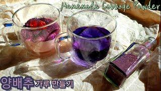 (ENG) Cabbage Tea | 양배추를 집에서 말…