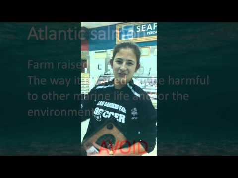 AICE Marine science 2 Seafood Watch Project