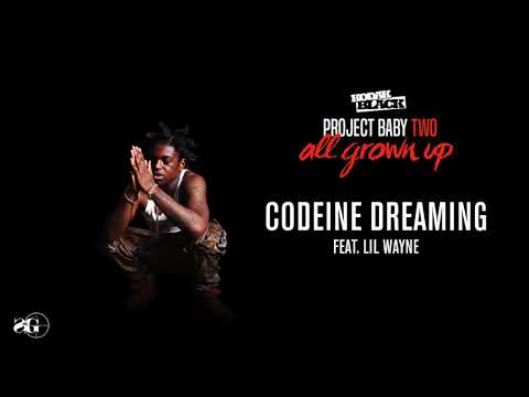 Kodak Black  Codeine Dreaming feat Lil Wayne  Audio