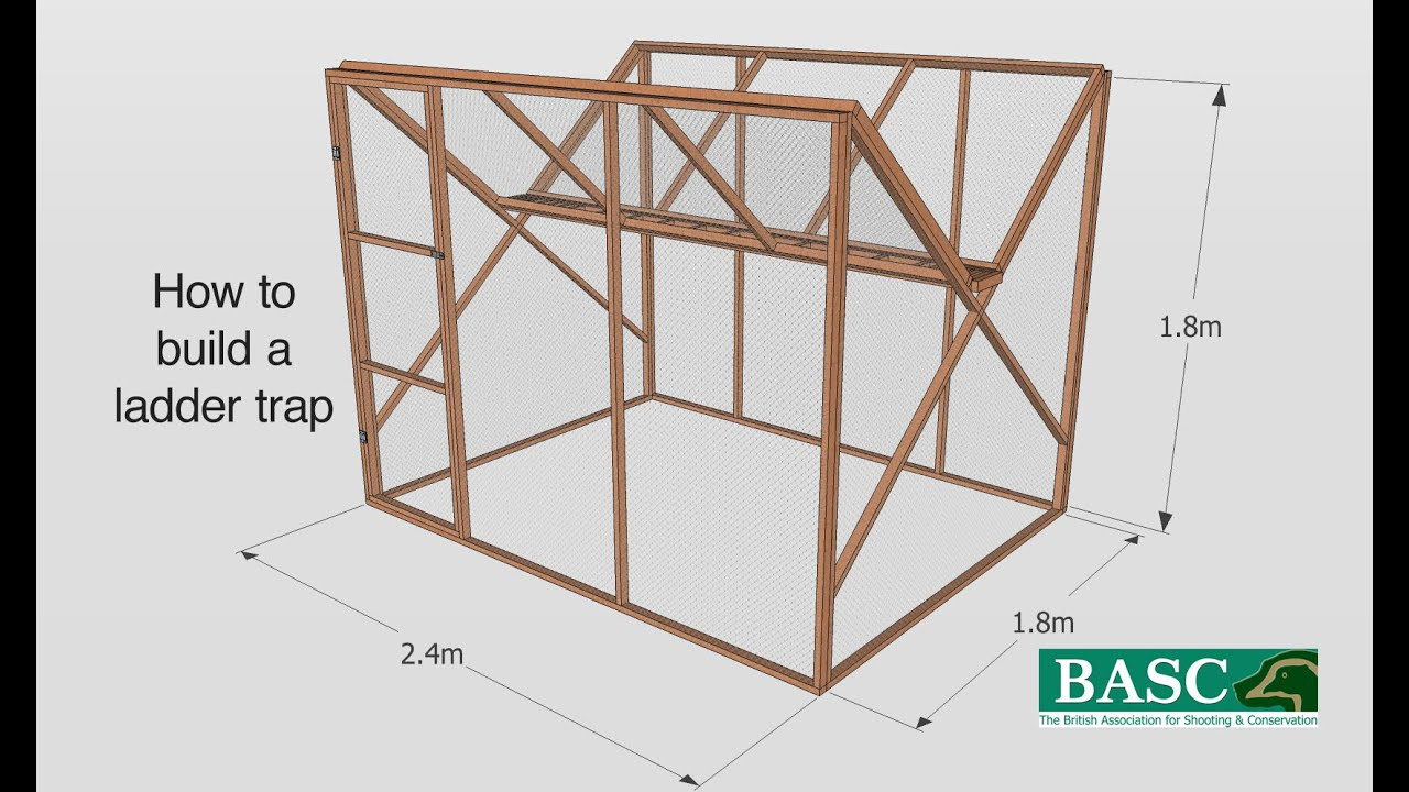 How to Build a Ladder Trap - YouTube
