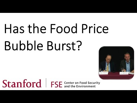 Has the Food Price Bubble Burst?
