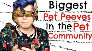 My Biggest Pet Peeves in the Pet Community!!!