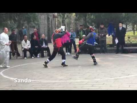 Temple of Heaven Kung Fu demo 2017