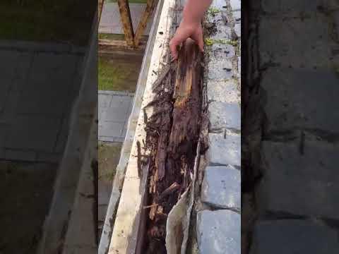 Alba24 Video: Lucrări de restaurare la podul porții a III-a