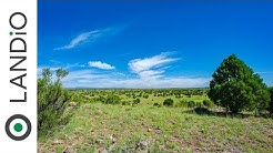 SOLD by LANDiO :  40 Acre Ranch in Arizona with Trees, Great Road Access & Amazing Views