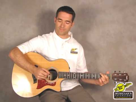 Add Percussion to Your Guitar Playing with a Shaker - George's Music
