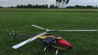 First flight with Align 3 Blades Head on T-Rex 700 - Luca Pescante Top 10 Video