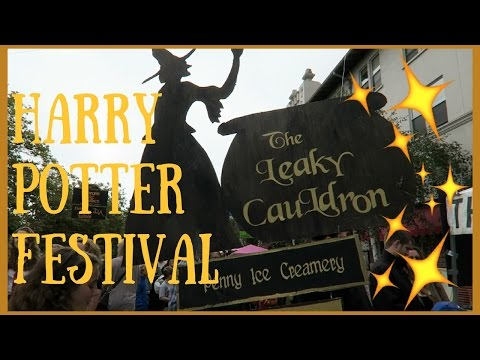 Harry Potter Festival