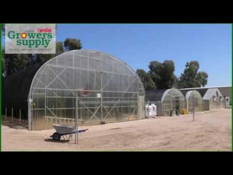 Litchfield Park, AZ - Blue Sky Organic Farms