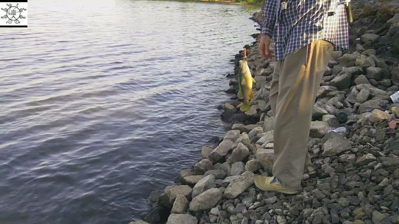 Fishing the rocks of badin lake youtube for Badin lake fishing