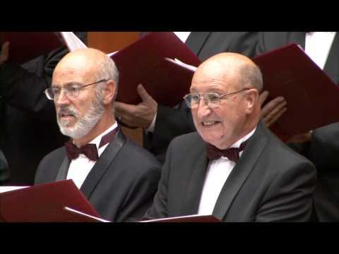 """Gloria - 07.""""Domine fili"""" Antonio Vivaldi"""