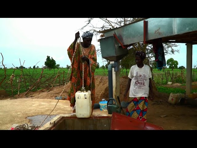 Empowering Women Through Access to Water - Senegal