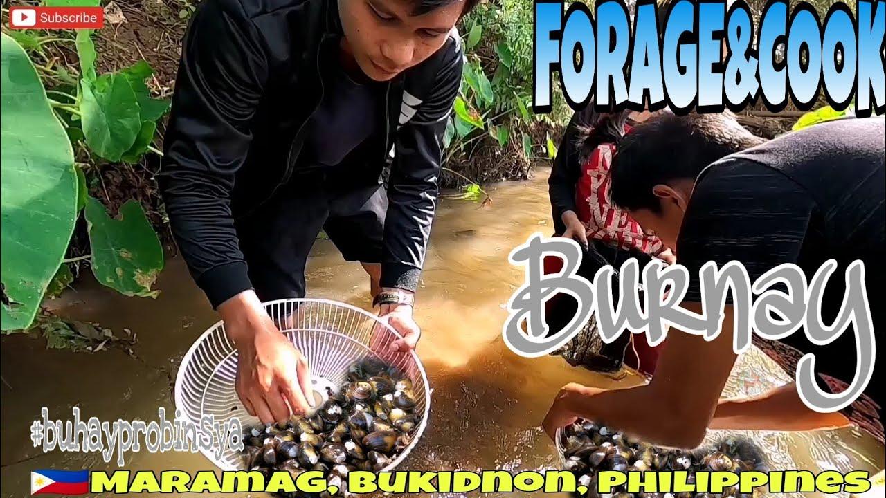Forage & Cook BURNAY kasama si Mrs. Monato   Ginataang Burnay   BUHAY PROBINSYA EP-59   BUKIDNON