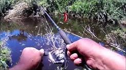 Niagara rivière Sainte -Suzanne pêche à la cuillère (river fishing)