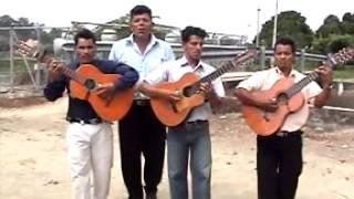 Pasillos y pasacalles ecuatorianos guitarras - Santa Lucía Guayas Ecuador