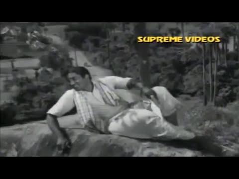 Super Hit Telugu Action Full Movie  Full Hd   Full Movies New Releases 2017