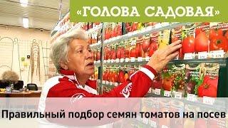 Голова садовая - Правильный подбор семян томатов на посев