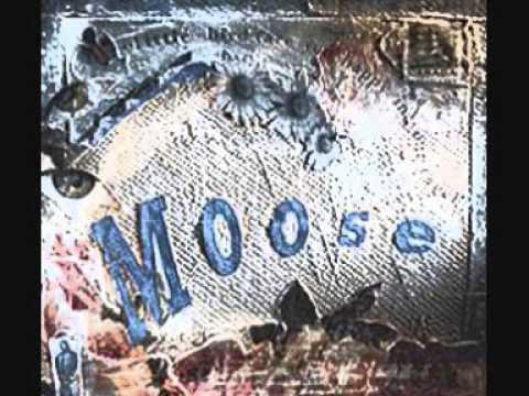 moose everybody s talking