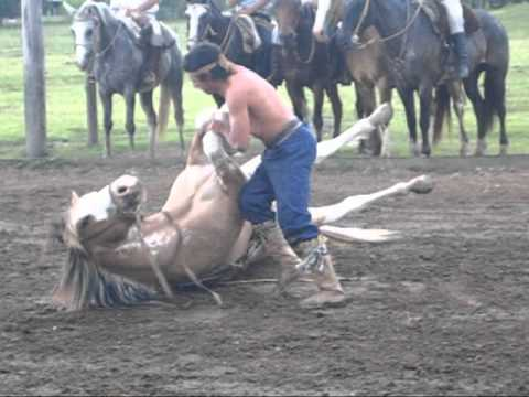 Horse Skills of the Gauchos of Argentina