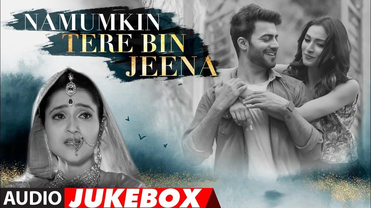 Namumkin Tere Bin Jeena New Hindi Film Full Album (Audio) Jukebox | Jubin Nautiyal, Shaan, Javed Ali