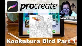 Procreate Coloring Tutorial Kookaburra Bird Zentangle On Ipad Part 1  Lisa Brando Extreme Coloring