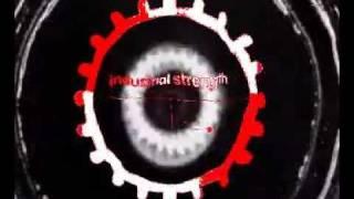 DubStrangers - New Structures - ISR DIGI 014