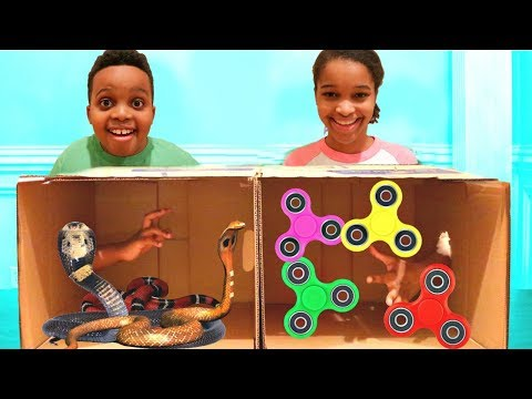 Thumbnail: What's In The BOX CHALLENGE!! - Shiloh and Shasha - Onyx Kids