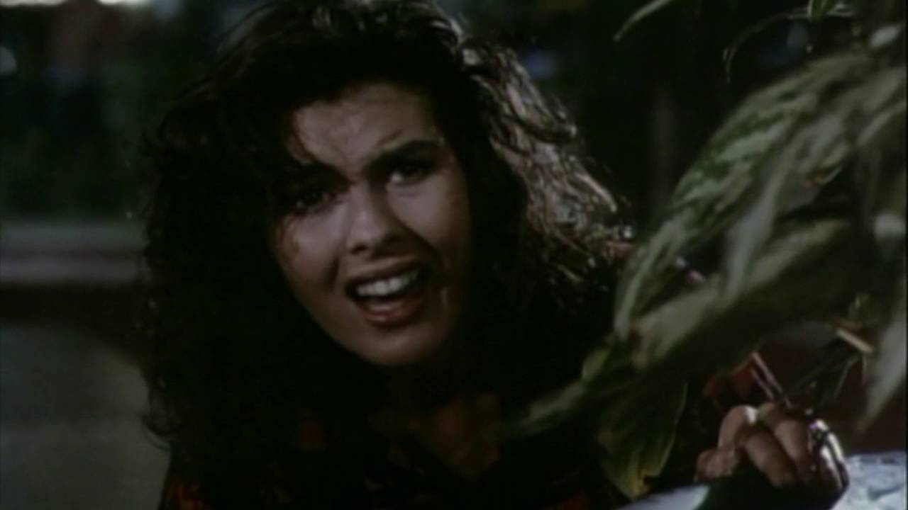 Download Chopping Mall (The Best Scenes)
