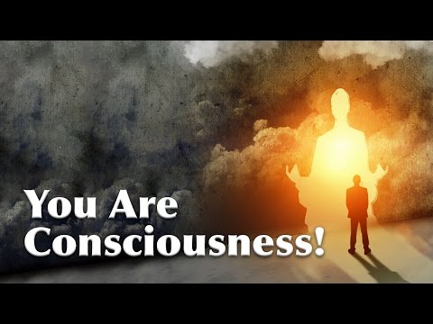 You ARE Consciousness! A Hilarious Interaction with Sri Sri (Hindi)   Art of Living