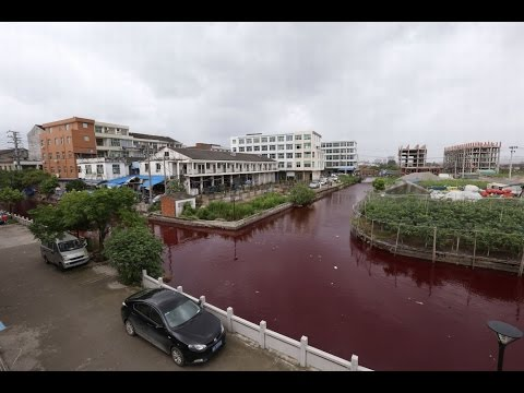 RIVER TURNS BLOOD RED IN CHINA? JULY 25, 2014 (EXPLAINED)